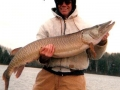 muskie_fishing_guide_hayward_wisconsin_2